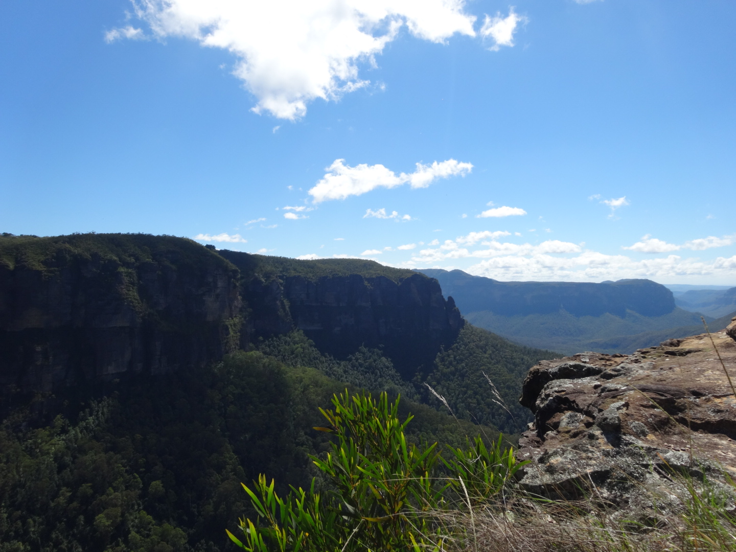 how to get from newcastle to blue mountains